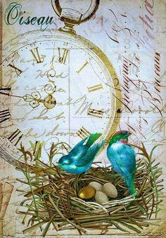 Pocket watch, birds & eggs in a nest