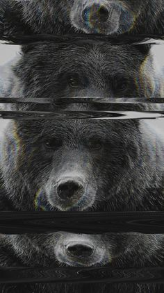 Bear Glitch Art Print by Cedric S Touati