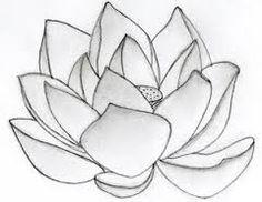 Resultado de imagem para easy pencil shading flowers