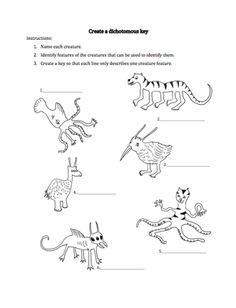 Here's an imaginary creature dichotomous key activity