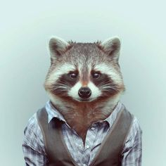 Zooportraits by Iago Partaly ...so cute & whimsical...click pic to see more!