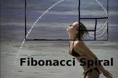 Patrones de retrocesos Fibonacci que funcionan