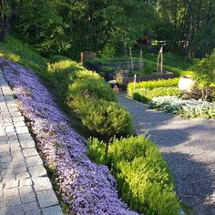 Garden Paving, Garden Paths, Garden Landscaping, Green Garden, Herb Garden, Sloped Garden, Beautiful Gardens, Perennials, Garden Design