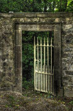 """Let's go in"" Clare, Ireland"