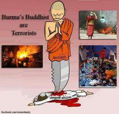 #BURMA'S #BUDDHIST ARE #TERRORISTS & #RACISTS .