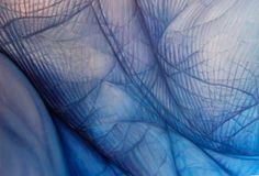 Edie Nadelhaft, Am I Blue?, 2011