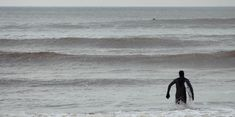 Surfing L. Photo Surf, Surfing, Miracle, Voici, Skate, Photos, Boards, Passion, Animals