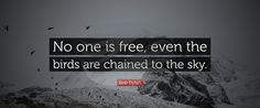 #BobDylan #No #one #free #even #birds #chained #tothe #sky #texcomsworldwide