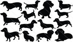 Dachshund Silhouette Vector graphics