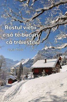 Pictures make life look grey – Winterbilder Winter Szenen, Winter Love, Winter Magic, Beautiful Winter Scenes, Switzerland Vacation, Snow Scenes, Winter Pictures, Life Pictures, Winter Beauty