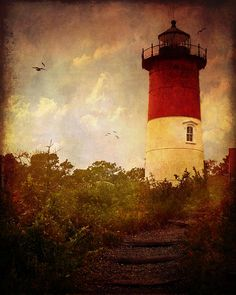 http://fineartamerica.com/featured/beacon-of-hope-lianne-schneider.html