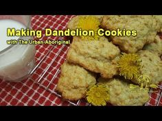 Let's make some cookies out of dandelion flowers! In this video I will walk through using a recipe for making cookies out of dandelion flower petals. How To Make A Cookie Recipe, How To Make Cookies, Aboriginal Food, Making Cookies, Dandelion Recipes, Dandelion Flower, Flower Petals, Urban, Chicken