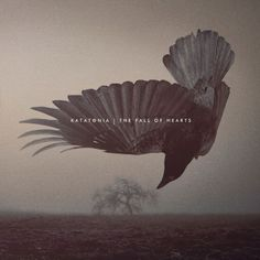 "KATATONIA, the Swedish purveyors of dark progressive rock/metal, will release their tenth studio album, ""The Fall Of Hearts"", on May 20 via Peaceville. The f..."