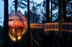 This treehouse turned architectural gem is available for private hire for parties, dinners, and gatherings. You and up to 50 of your nearest and dearest can spend the evening above the trees for a once-in-a-lifetime experience together. | Photo Credit: Redwoods Treehouse
