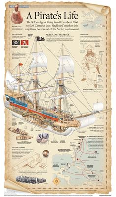 A Pirate's Life Visual Infographic Ice climbing waters trip ships kayaking Pirate Art, Pirate Life, Pirate Ships, Pirate Crafts, Pirate History, Golden Age Of Piracy, Old Sailing Ships, Model Sailing Ships, Black Sails