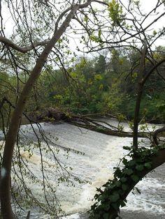 River Esk, Musselburgh.