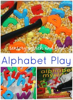 Alphabet Sensory Bin & Book Play Go on a mystery letter hunt!   Hands-On Alphabet Sensory Play! Alphabet Mystery by Audrey Wood is a fun book for letter recognition, especially lower case letters! I set up a mystery alphabet hunt in a sensory bin to go along with this book. I ...
