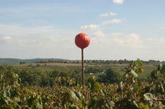 El color aplicado a las viñas Porcellànic: http://porcellanic.com/videos-porcellanic/el-tratamiento-del-color-en-porcellanic/