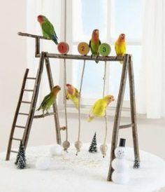 5-amazing-bird-pet-play-stand-ideas-8