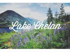 Backpacking the Chelan Lakeshore Trail // Alpine Lily