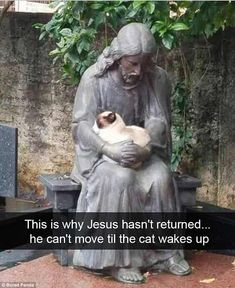 You look fur-miliar! This comfortable kitty looked right at home in the arms of a Jesus statue