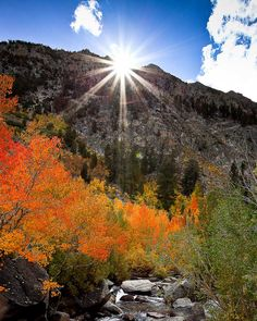 Here comes the sun, Bishop Canyon, Inyo National Forest, CA