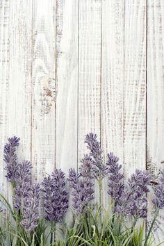 Photo about Bouquet lavender on wooden background closeup. Image of bouquet, flora, provence - 44544312 Flower Backgrounds, Flower Wallpaper, Wallpaper Backgrounds, Iphone Wallpaper, Photo Bouquet, Image Digital, Background Pictures, Wooden Background, Flora Background