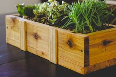 """Succulent Planter DIY (for under $10) - I don't know what it is about this succulent planter. Maybe """"soulmate"""" is a strong word, but for me and my succulents, we have a special thing going."""