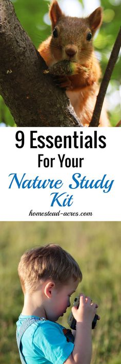 9 Essentials For Your Nature Study Kit. Have fun with your nature study by keeping everything on hand and ready to go Nature Activities, Science Activities For Kids, Learning Activities, Homeschooling Resources, Science Curriculum, Life Science, Forest School, Forest Camp, Professor