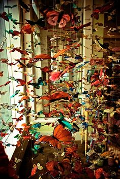 butterflies hanging from the ceiling. anything could go here, like cranes or a sea of lights (think Phoenix Art Museum!)