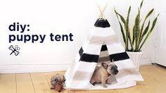 Resultado de imagem para diy pet tent