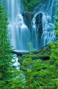 Three Sisters Wilderness - Oregan - EUA
