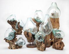 Molten Sculptural Glass Bowls on Teak Wood