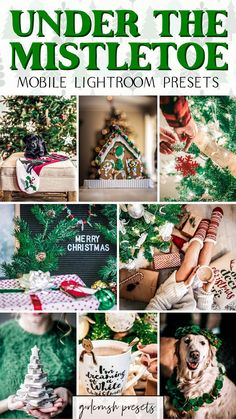 Make Money Blogging, How To Make Money, Instagram Marketing Tips, Instagram Tips, Under The Mistletoe, Free Blog, Winter Holiday, Winter Theme, Perfect Photo