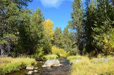Hat Creek, Mount Lassen--classic northern California stream shot