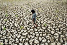 CLIMATE CHANGE =  DROUGHT = HUNGER