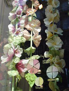 Beautiful Window Displays!: anthropologie