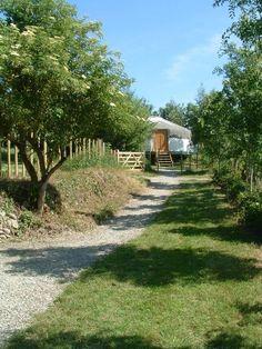 Adventure Cornwall Lombard Farm - Cornwall, England UK #glamping #yurt #teepee #tipi #cabin #orchard