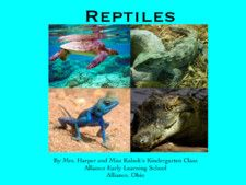 Reptiles by Mrs Harper's class and Others
