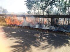 Massima attenzione contro gli incendi boschivi. Attivato il servizio AIB con il gruppo comunale della protezione Civile e l'Aeopc https://www.facebook.com/975131115835712/photos/a.976382129043944.1073741828.975131115835712/1399926913356128/?type=3&theater