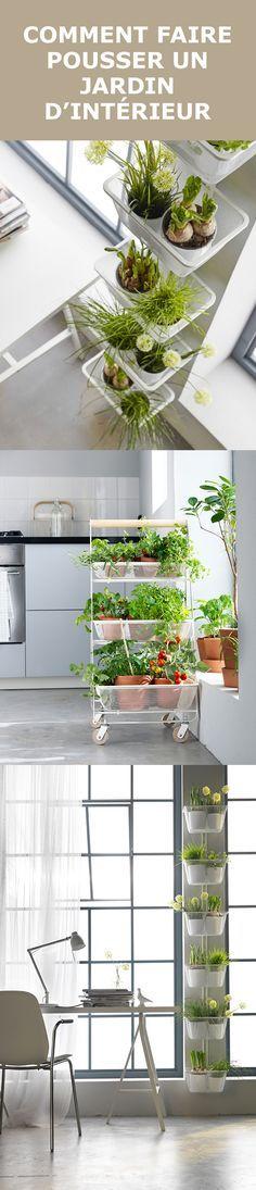 Pourquoi ne pas déplacer l'extérieur, à l'intérieur ? De petites touches de plantes ou de fleurs ajoutent de la fraîcheur à la maison et peuvent même accroître votre bien-être. Les murs vous semblent vides ? Créez un mur végétal avec des plantes suspendues. La desserte mobile RISATORP peut recevoir de multiples plantes, que vous pourrez déplacer à votre guise. Les plantes en pot et les herbes peuvent aussi ajouter un peu de vie aux fenêtres de la cuisine.