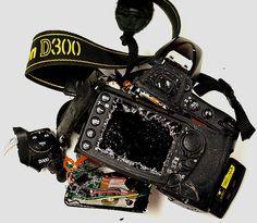 SmashedD300backDk-PC126443.jpg (700×611)