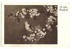 Vogel auf Blütenzweig, 1937 | eBay