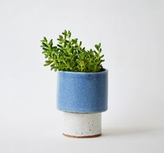 Horizon planter - second
