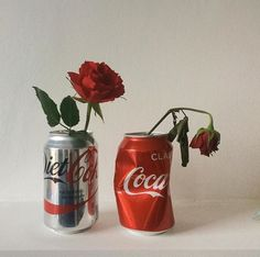 The two coke cans represent the art of aging and the dead rose shows someone who has already aged.