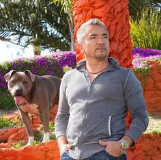"""Cesar Millan is a best-selling author, public speaker, and the internationally acclaimed star of """"Cesar 911,"""" as well as the original, Emmy-nominated host of the """"Dog Whisperer"""" program. With """"Cesar 911,"""" he brings more than 25 years of dog experience and his status as the most recognized and sought-after authority in the field of dog care and rehabilitation directly to communities terrorized by unruly hounds."""