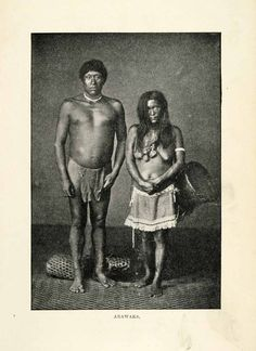 1901  Arawaks,native people of the Caribbean,likely who Columbus encountered.They were peaceful people,unlike neighboring  Caribe who were cannibals.