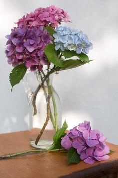 Dicas para fazer lindos arranjos de flores - Casinha Arrumada