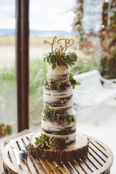 Semi-naked layer cake adorned in home-grown succulents