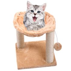Pet Beds Hammock Scratch House Kitty Net Bed Furniture with >>> Learn more by visiting the image link. (This is an Amazon affiliate link)